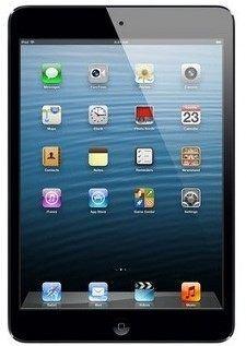iPad mini used