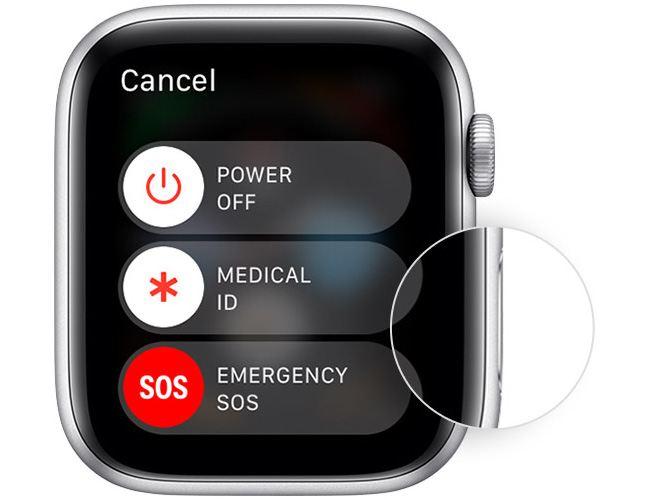 Restarting the Apple Watch.