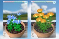 Grow Flowers and Send Bouquets from your iPhone