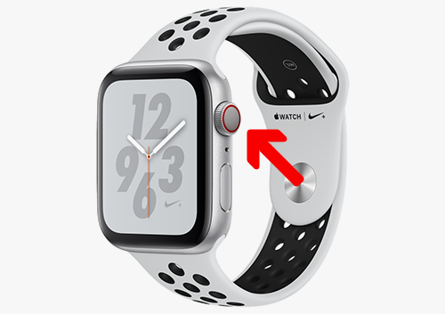 What Connectivity Have my Apple Watch